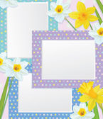 Vector empty photo frames with daffodils. — Stockvektor