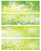 Vector  spring nature banners, birch  tree leaves,  dandelion an — Stock Vector