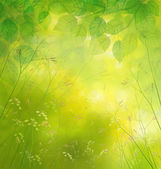 Nature  background, birch leaves and wildflowers. — Stock Photo