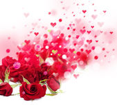 Roses flowers bokeh background. — Stock Photo