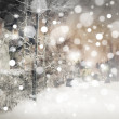 Winter night landscape — Stock Photo #48946073