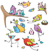 Vector  cute birds cartoons. — Stock Vector