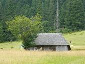 Ein altes haus in den bergen — Stockfoto