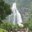 Stock Photo: Tourist Near Jog Falls