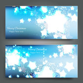 Elegant Christmas background with snowflakes — Stock Vector