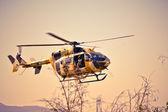 Eurocopter U-72 Lakota — Stock Photo