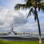 Постер, плакат: USS Bowfin Submarine Museum docked for exhibition