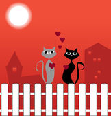 Cats in love — Foto Stock