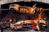 Roasted pigs delicious cooked on a spit in the fireplace — Stock Photo