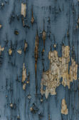 Vernice scrostata su un legno — Foto Stock
