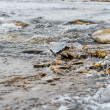 Stock Photo: River flow