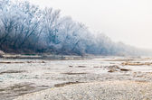 Winter landscape with the river — Foto Stock