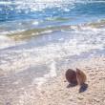 Yaz saati deniz kabuğu Plajı — Stok fotoğraf