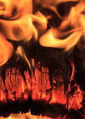 Close-up of a Burning Log — Stock Photo