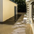 Flood Water in Yard — Stock Photo