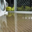 Stock Photo: Flood Water on Carpet