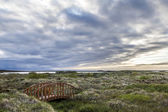 Wooden Bridge on an Icelandic Moor — Stock Photo