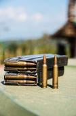 Bullet — Stock Photo