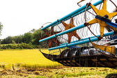Maaimachine in rijst veld — Stockfoto