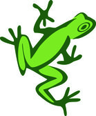 Froggy — Stock Vector