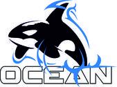 Orca — Stock Vector