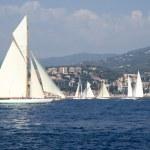 Classic yacht regatta — Stock fotografie