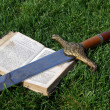 Stock Photo: Medieval sword