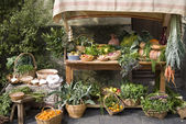 Medieval market stall selling fruit — Stockfoto