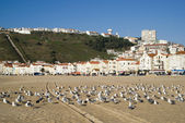 Nazare, Portugal — Stock Photo