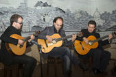 Fado - playing a traditional portuguese guitar — Foto Stock
