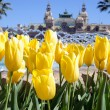 Spring in Monte Carlo — Stock Photo #18726285