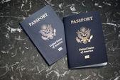 Nas paszport — Zdjęcie stockowe