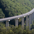 Viaduct in Alps — Stock Photo