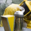 Royalty-Free Stock Photo: Smoker beekeeper