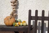 Raccolto d'autunno — Foto Stock