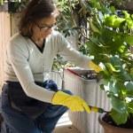 Senior woman gardening — Stock Photo #18804003