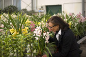 Senior dam vid anläggningen plantskola — Stockfoto