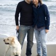 Happy couple with their labrador — Foto de Stock