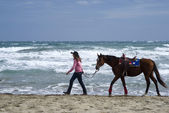 A young girl and horse on the beach — Stock Photo