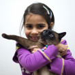 Little girl with siamese cat — Stock Photo #18833563