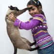 Stock Photo: Little girl with siamese cat