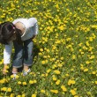 Girl picking flowers — Stock Photo