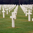 Normandy Cemetery - Stock Photo