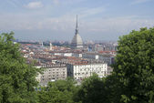 City of Turin, Italy — Stock Photo