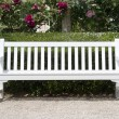 Garden bench — Stock Photo #28979601