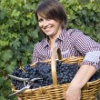 Woman working in the vineyards — Stock Photo
