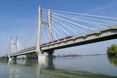 铁路桥梁 — 图库照片