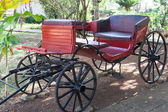 Horse cart horse — Stock Photo