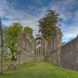Stock Photo: Inchmahome Priory