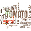 Tomato Wordcloud — Stock Photo